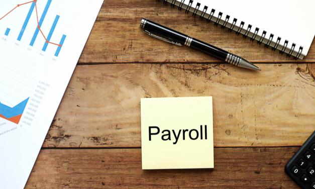 Understanding payroll support and frequencies