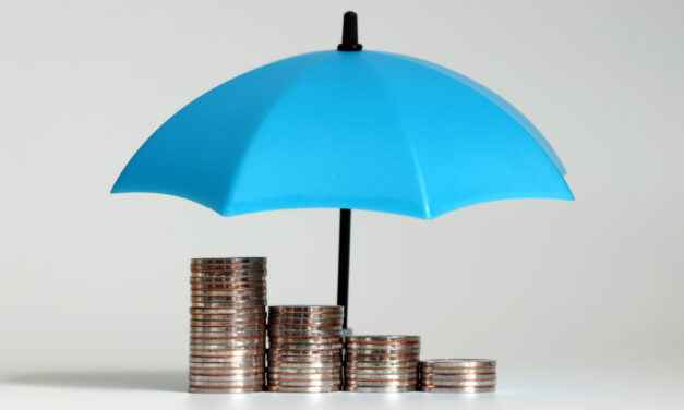 What pension and protection products do workplace pension providers offer?